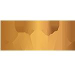 caivil_logo